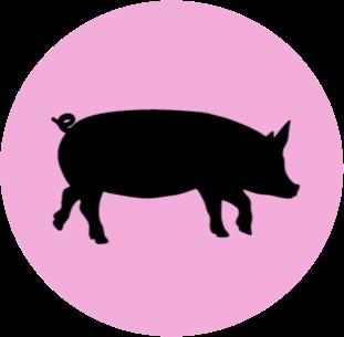 K9 Pork Products